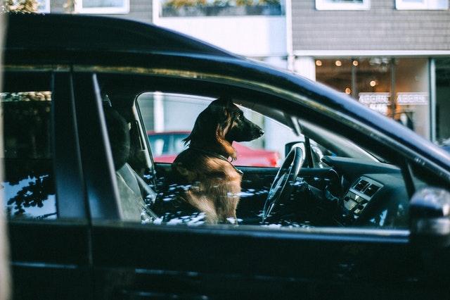 Devenir chauffeur privé pour gagner un salaire